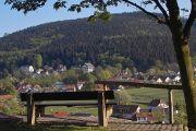 Von Oberhof bis Neuhaus oder Neuhaus bis Blankenstein • Rennsteigwanderung 4, je Pers. ab 229 €